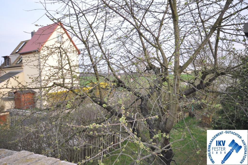 Ausblick von Dachterrasse Nebengelass